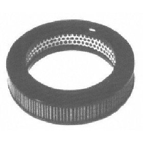 Show details of Motorcraft FA1058 Air Filter.