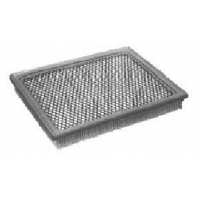 Show details of Motorcraft FA1695 Air Filter.
