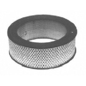 Show details of Motorcraft FA1057 Air Filter.