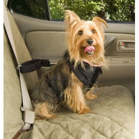Show details of Solvit Small Pet Vehicle Safety Harness.