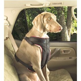 Show details of Solvit Extra-Large Pet Vehicle Safety Harness.