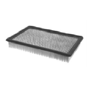 Show details of FRAM PPA7365 Air Hog Panel Filter.