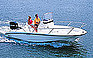 Show the detailed information for this 2008 Boston Whaler 20 Dauntless.