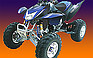 Show the detailed information for this 2007 OTHER ATV-250cc-S-9 Rough Rider.